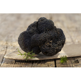 Truffes noires entières