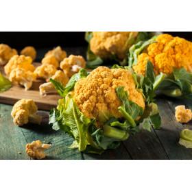 Chou fleur orange